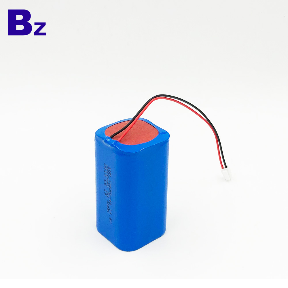 2600mAh High performance Lithium-ion Battery Pack
