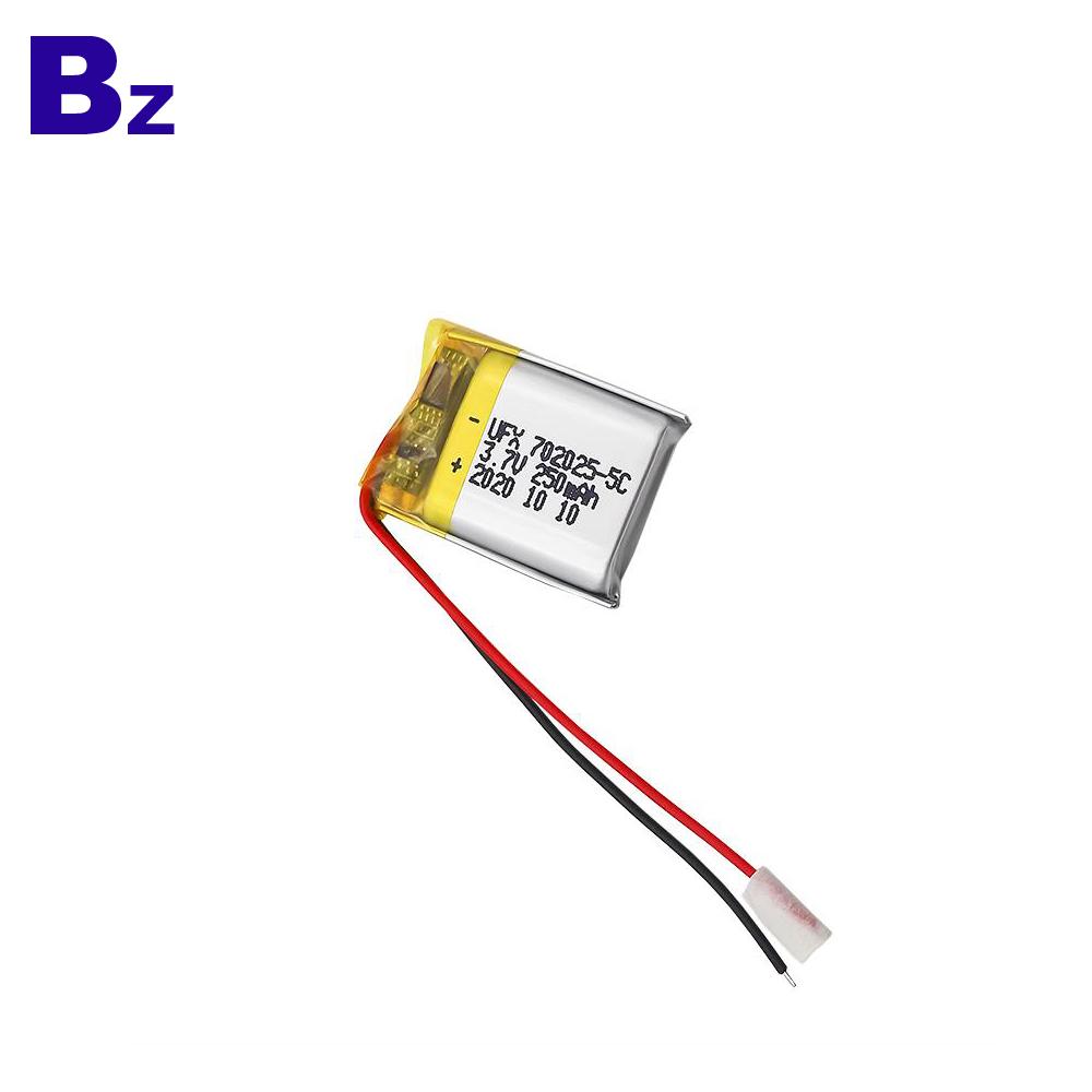 250mAh Entertainment Robot Lipo Battery